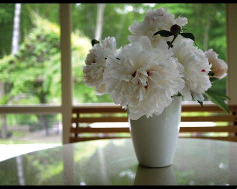 Accent Focal Point Devin Burnes Floral Portfolio Balance Devin Burnes Floral Portfolio