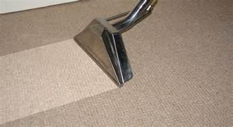 teppich waschsauger steam team carpet cleaning hazleton nepa
