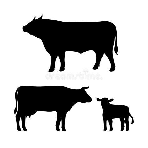 clipart mucca mucca toro vitello illustrazione di stock illustrazione