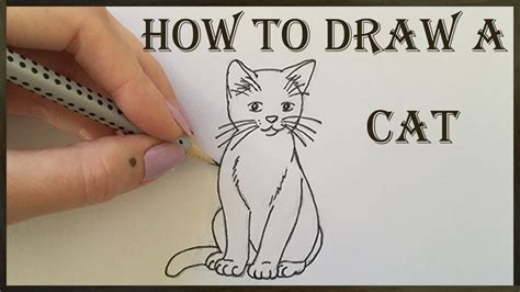 how to draw doodle cat cat drawing how to draw a cat