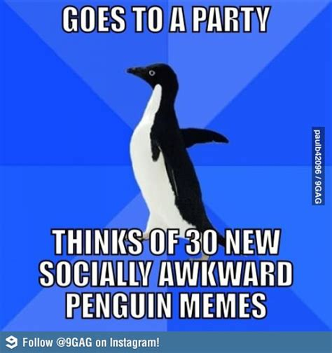 Socially Awkward Penguin Meme - socially awkward penguin funny meme funny memes and pics