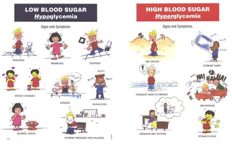 highs lows of type 1 diabetes the ultimate guide for and adults books category titi s teaching tools