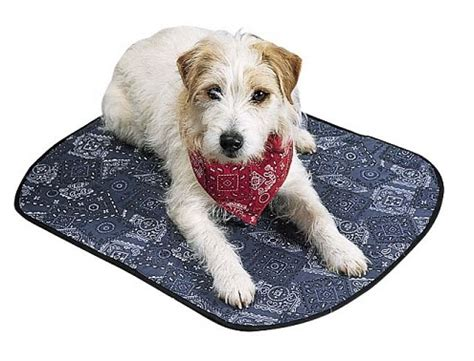 cooling mat for dogs cooling beds mats for dogs keep your cool nwt ebay