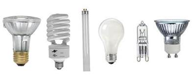 Different Types Of Led Light Bulbs Choosing The Best Light Bulbs For Your Condo Elightful Canada Light Bulbs