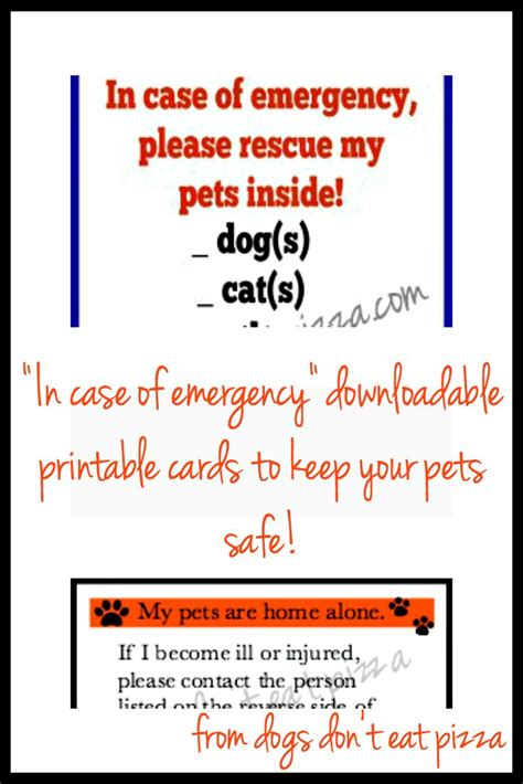 printable id card for wallet 17 best images about advertising on pinterest national