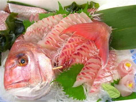 best sashimi fish seasonal fishes 18 madai seabream shizuoka sushi