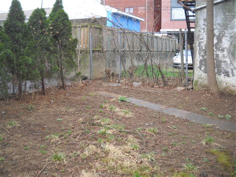 dirt backyard ideas landscape ideas for dirt yard izvipi com