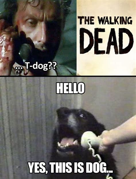 Yes This Is Dog Meme - yes this is dog the walking dead know your meme