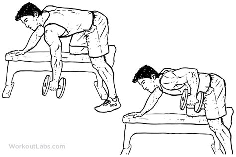 dumbbell rows on bench single one arm dumbbell bench rows workoutlabs