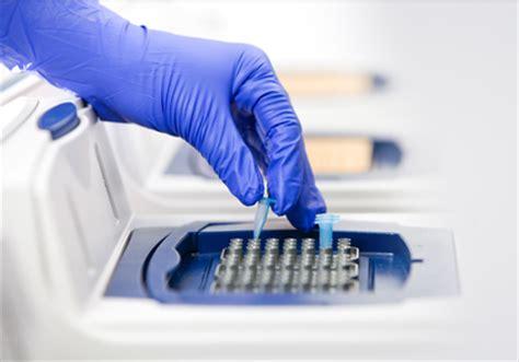 test di biologia molecolare biologia molecolare roma