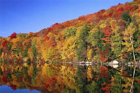 new england s spectacular fall foliage summer 2017 fall colors 2017 sliderfallcolors