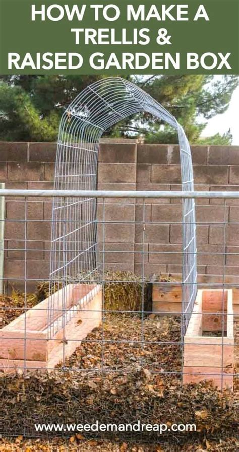 how to build a trellis 1000 ideas about cucumber trellis on pinterest trellis