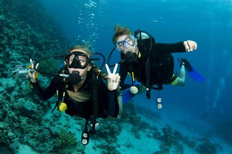 House Of Scuba by 9 Reasons To Scuba Dive On Your Gap Year