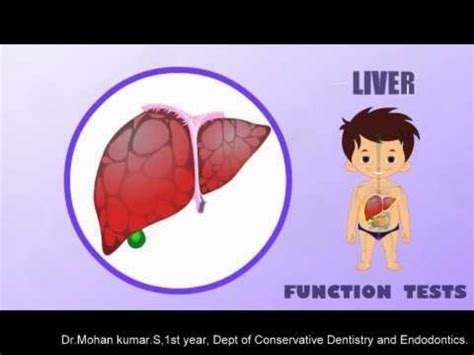 Detox Meaning In Tamil by Liver Function Test