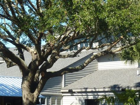Hilton Head Boathouse Picture Of Hilton Head Boathouse Hilton Head Tripadvisor