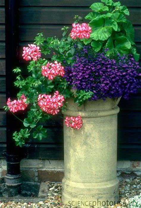 Chimney Pot Planters by Top Tip On A Pedestal Make More Of Your Garden Ornaments