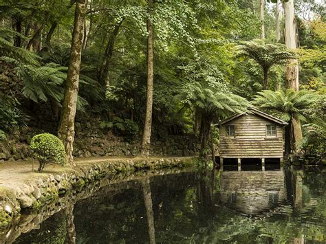 The Shed Dandenong by Yarra Valley And Dandenong Ranges Australia