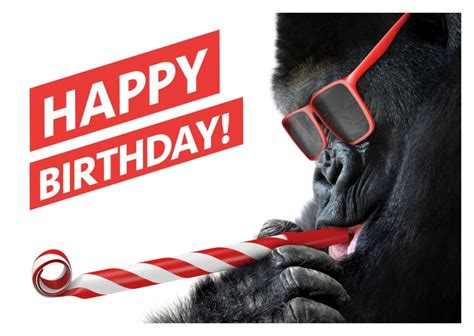 Attractive Christmas Greetings Cards With Pictures #9: Greeting-card-send-online-happy-birthday-gorilla-with-sunglasses-6331_37.jpg