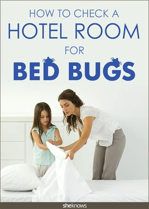 how to get rid of dust in room 1000 ideas about bed bugs on bed bugs treatment dust mites and bed bug spray