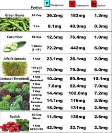 renal diet food charts top renal diet foods dialysis veggies projects to try