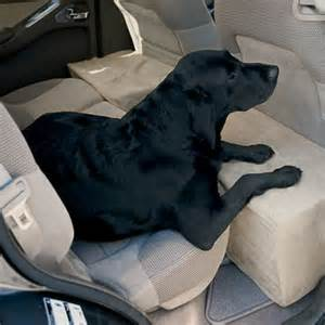 Orvis Car Seat Covers For Dogs Travel Accessory Solid Foam Microfiber Backseat