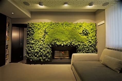 parete verde interni arredare con le piante una parete verde in casa cose di