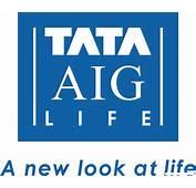 Download Tata Aig Motor Insurance Policy  Manga