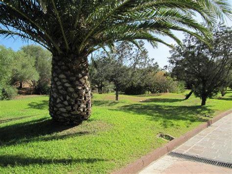 giardini curati vialetti e giardini ben curati foto di park hotel porto
