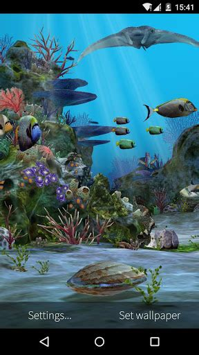 aquarium live wallpaper hd for android youtube 3d aquarium live wallpaper hd apk download for android