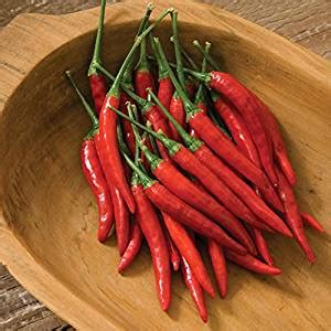 buy cayenne pepper seeds