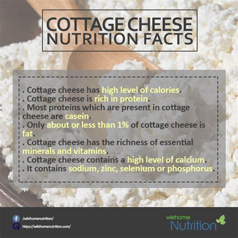 nutrition facts homemade cottage cheese