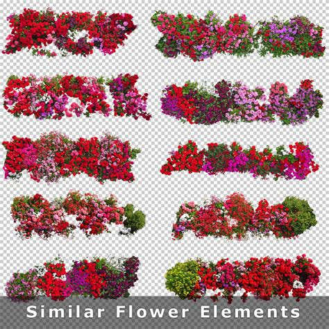 plan background png top view flowers cutout plan view images png for