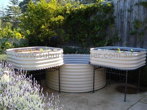home aquaculture backyard fish farming 64 best how to raise crabs shrimp lobster and fish at