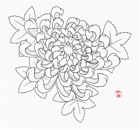 chrysanthemum flower tattoo designs chrysanthemum flower by laranj4 on deviantart
