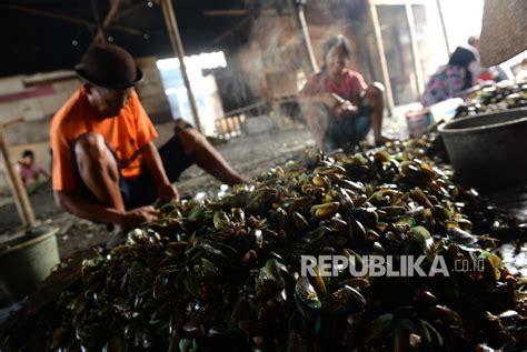 Kerang Hijau Di Semarang resto apung muara angke siap jadi wisata kuliner favorit republika