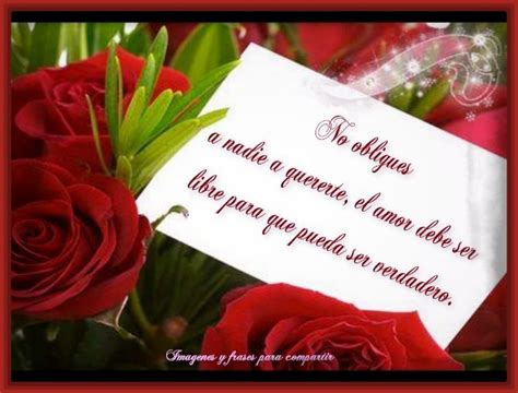 imagenes rojas con frases las mejores fotos de rosas hermosas rojas imagenes de rosa