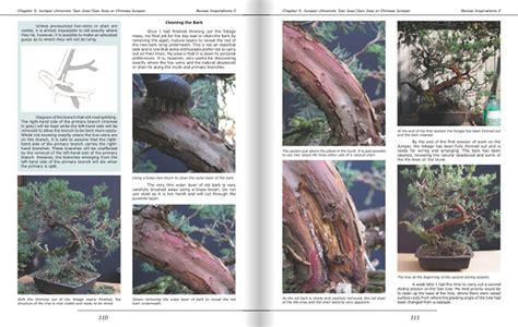 bonsai foundations books b4mepublishing bonsai books