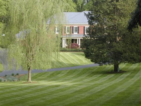 about all green landscape contractor chantilly va