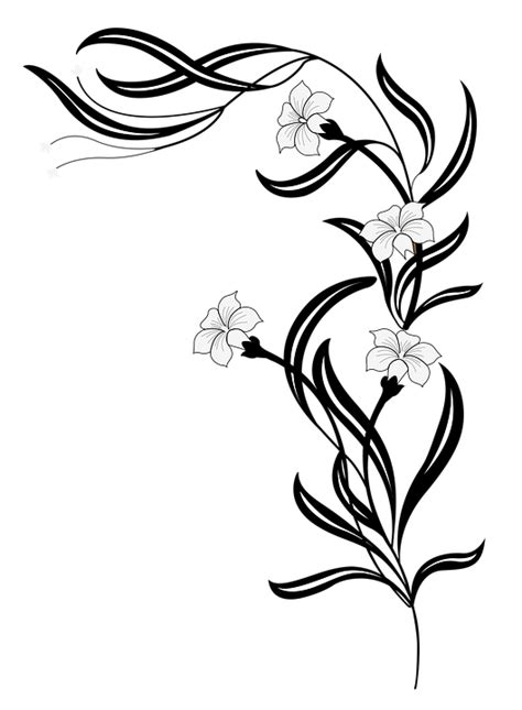 imagenes de png blanco y negro ilustraci 243 n gratis flores jard 237 n blanco negro imagen