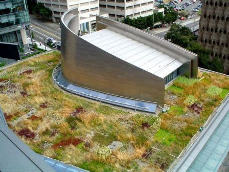 living roof seattle 22 best arch city images on amazing