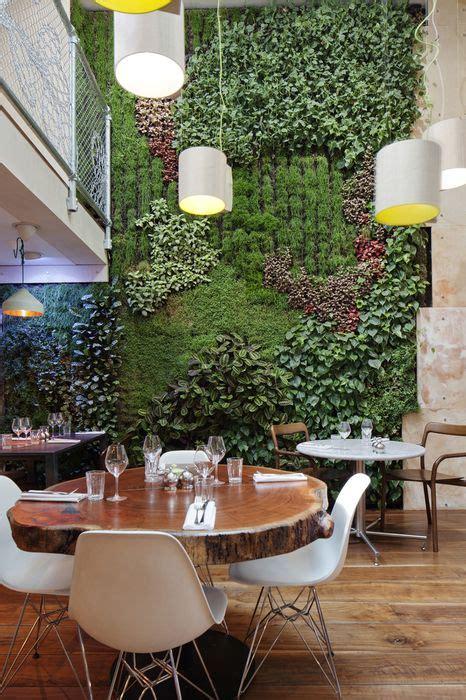 hiasi dinding pakai wallpaper  biasa pakai tanaman  kere