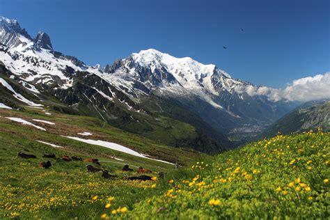 Di Montagna by Paesaggio Estivo Monte Bianco Valle D Aosta Montagna Estate