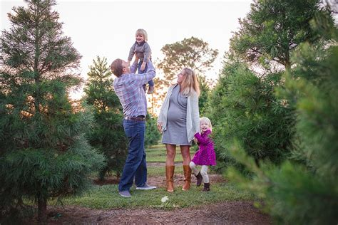 christmas tree farms pensacola 28 best tree farm pensacola fl tree farm mini session pensacola fl