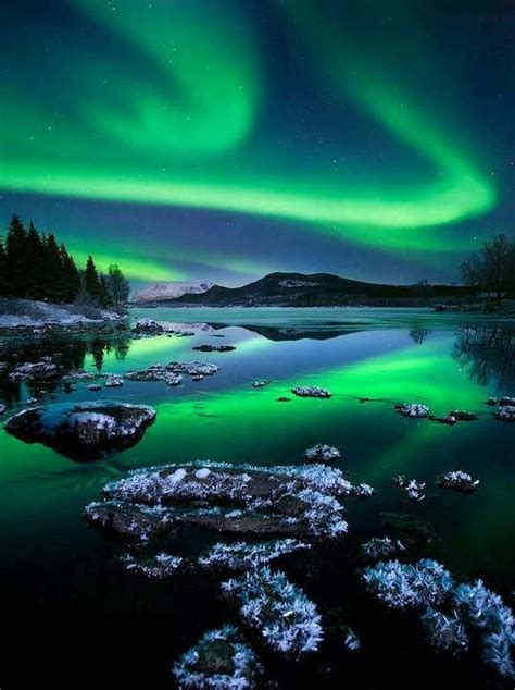 When Are The Northern Lights In Alaska by Northern Lights Alaska Travel