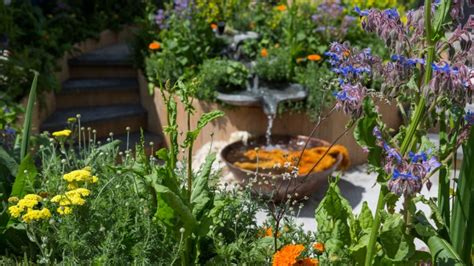 Garten Gestalten Fotos by 31 Garden Designs Featured At The Rhs Chelsea Flower Show 2016