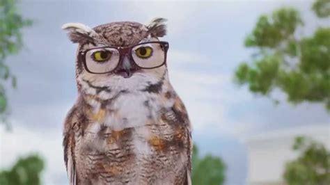 american eyeglasses owl commercial american eyeglasses owl commercial america s best