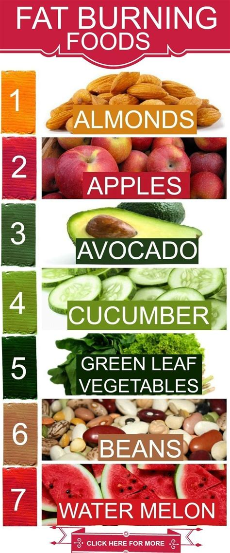 8 Foods That Flatten Your Stomach by Best 25 Stomach Burning Foods Ideas On