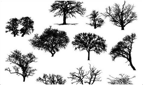vector tree free tree vector 500 free illustrations to