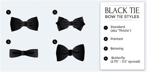 Bowtie Regular Purple black tie dress code tie a tie net