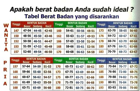 Timbangan Berat Badan Orang Dewasa cari tahu berat badan ideal rata rata anak indonesia dan usianya info obat herbal